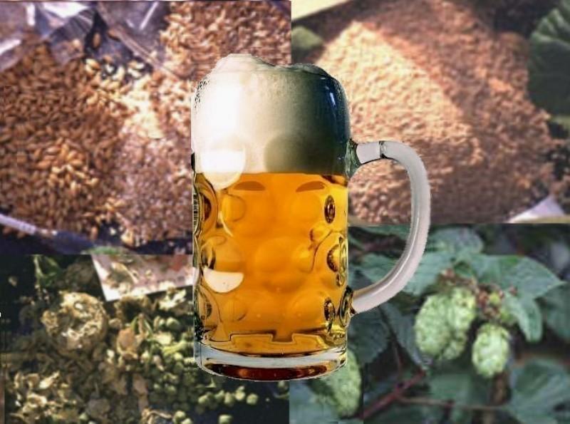 Linha de Cerveja